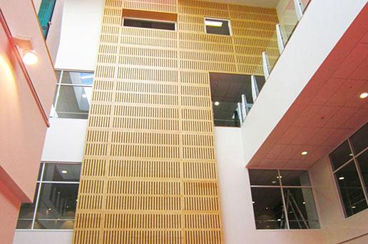 Waikato Hospital 1